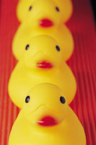 ducks-in-a-row-red.jpg