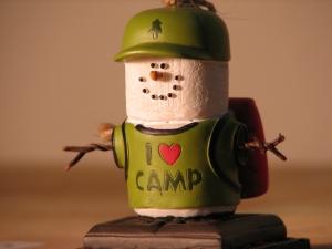 iheartcamp.jpg