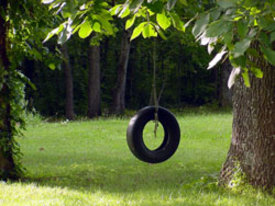 Thumbnail image for tireswing.jpg